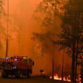 Brände nahe Sydney bilden Megafeuer