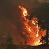 Zwei Feuerwehrleute starben im Kampf gegen Buschbrände