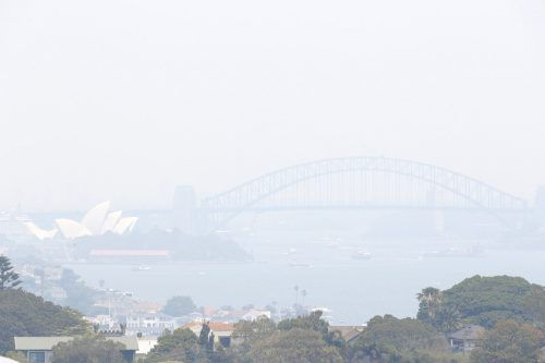 Seit Wochen wüten Buschbrände in der Umgebung von Sydney. AP