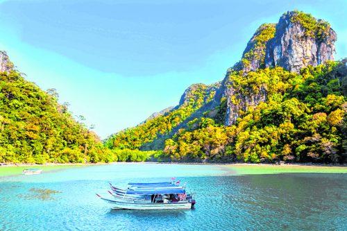 Mit Motorbooten geht es durch die schöne Mangrovenlandschaft.