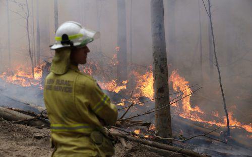 Nahe Sydney konnte die Feuerwehr das Mega-Feuer eindämmen. AP