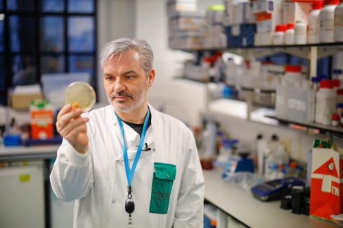 Am Londoner Imperial College School of Medicine (ICSM) arbeitet Doktor Paul McKay an einem Impfstoff gegen das Virus 2019-nCoV. AFP