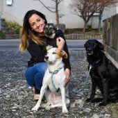 Eine Stimme für Hunde