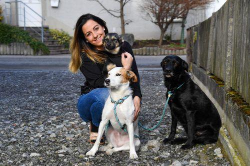 Chiara Knowle mit ihren beiden Hunden und einem rumänischen Welpen. VN/Lerch