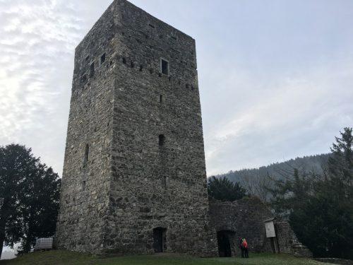 Der Bergfried wurde bereits saniert und mit einem Notdach versehen. vol.at/mayer
