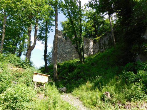 Die Arbeiten an der Neuburg werden in diesem Jahr fortgesetzt.michael mäser