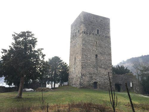 Die Tostner Burg soll zukünftig eine Aussichtsplattform erhalten.vol.at/mayer