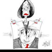 Nancy-Pelosi-Zerriss!