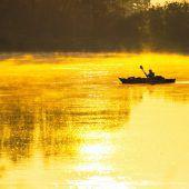 Notfallplan für bedrohte Süßwasserökosysteme