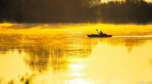 Flüsse, Seen und Feuchtgebiete zählen zu den artenreichsten Ökosystemen. APA