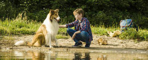 Lassie wurde unfreiwillig vom zwölfjährige Flo getrennt. Warner Bros