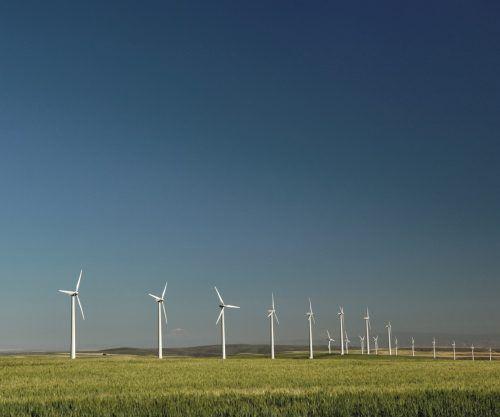 Alternative Energien wie die Windkraft gewinnen zunehmend an Bedeutung. Das sorgt für Aufträge und Arbeitsplätze. Fa