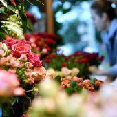 Blumentrend in Pastellfarben