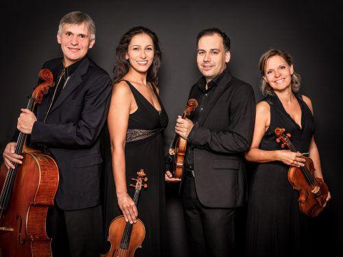 Das Amar Quartett widmet sich der hohen Kunst des Zusammenspiels.beat mumenthaler