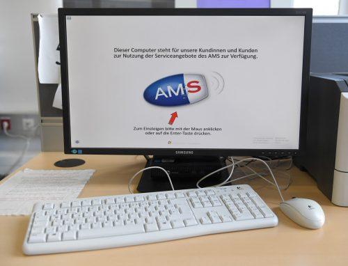 Der direkteste Weg zum AMS führt derzeit über das Internet.APA