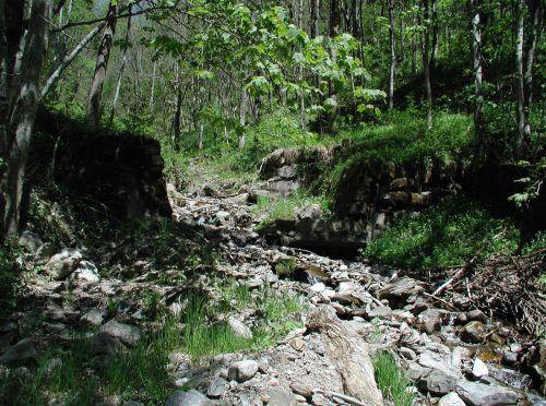 Der leblose Körper wurde im Messnertobel aufgefunden. wildbach-/Lawinenverb.