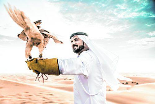 Falken halfen den Beduinen einst beim Überleben. Heute werden sie oft falsch gehalten.
