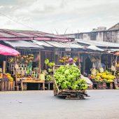 """<p class=""""caption"""">Frische Früchte bekommt man auf Madagaskar so gut wie überall in rauhen Mengen.</p>"""