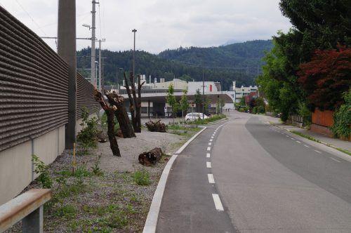 Im Bereich der Zehentstraße entsteht eine Begegnungszone.Gemeinde