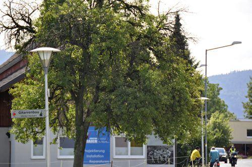 In Meiningen wird die Straßenbeleuchtung genau durchleuchtet. gemeinde