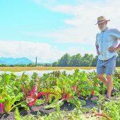 Biolandbau als gelebter Klimaschutz