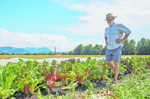 Permanenter Humusaufbau ist bei Bio-Böden eine Selbstverständlichkeit.
