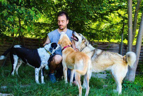 """""""Was die Tierpfleger gerade leisten, ist bewundernswert"""", sagt Milohnic."""