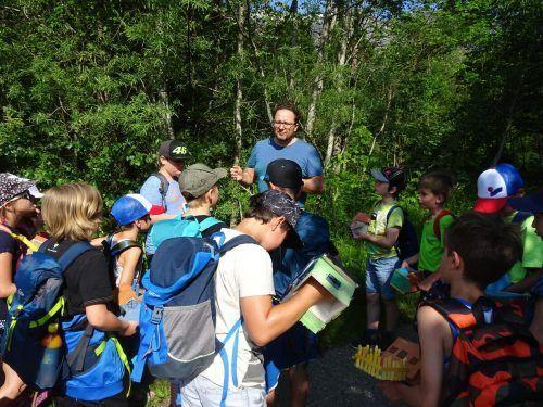 Die Schüler der Volksschule Vandans mit Förster Alexander Stoiser von der WLV Bludenz im Wald am Rellsbach. STO