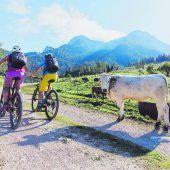 Österreich mit dem Rad erkunden