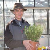 Pflanzenverkauf auf Vertrauensbasis