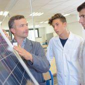 Papaya-Enzym verbessert Solarzellen