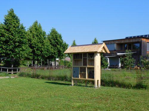 Am Ratzdamm wurde ein Wildbienen- und Insektenhotel errichtet. Mäser
