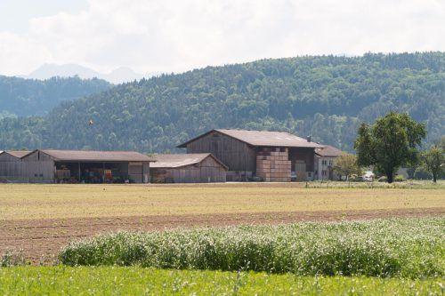 Der Allgäuer-Hof in Feldkirch. Das Testergebnis des Gesamtbestandes brachte Erleichterung. VN/Stiplovsek