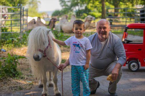 Der fünfjährige James mit Pony und Opa Adolf. Die Zirkusleute stecken in einer schwierigen Situation. Nachdem sie in Hard waren, stecken sie nun in Bregenz fest. VN/Steurer