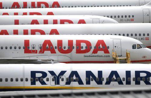 Die Basis Wien ist der mit Abstand größte Stützpunkt der Ryanair-Tochter. APA