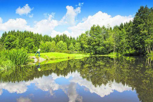 Die sechs Golfplätze könnten landschaftlich kaum unterschiedlicher sein.