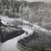 Ein Notstandsprojekt im Ersten Weltkrieg