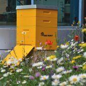 100.000 Bienen