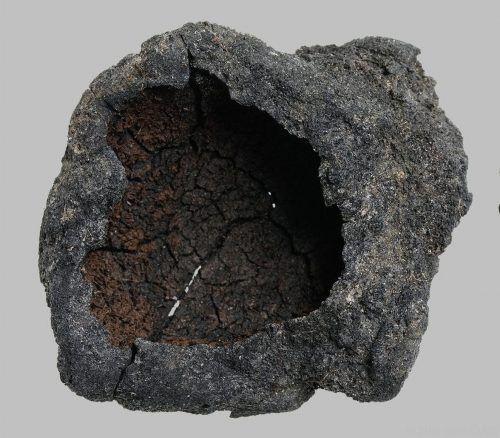 Forscher konnten Malz in verkohltem archäologischen Material nachweisen.