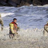 Drama auf See: Fünf Surfer vor holländischer Küste getötet