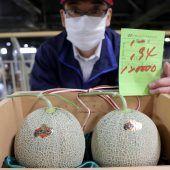 Zwei Melonen um billige 1000 Euro