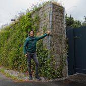 Sympathisches Grün statt grauer Mauer