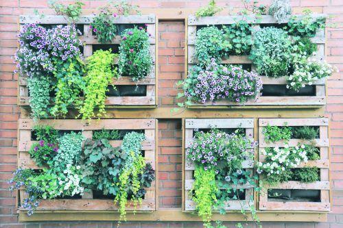 Urban-Gardening kann auch hochkant auf Balkonen stattfinden.Shutterstock