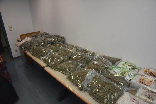 """111 Kilogramm """"Gras"""", 70.000 Euro in bar und Pistolen beschlagnahmt. APA/LPD Wien"""