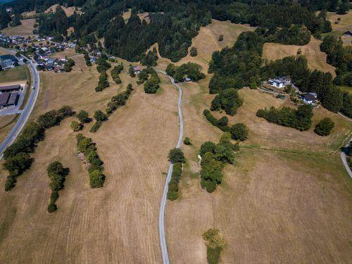 2018 waren die Bauern im Walgau besonders von der Dürre betroffen.Die Studie zeigt auch, dass der Klimawandel die Dürreperioden im Alpenraum stark beeinflusst. VN/Steurer