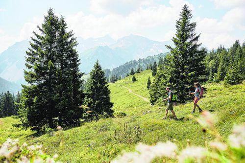 Auf Wanderung im Brandnertal.Alex Kaiser/Alpenregion Bludenz Tourismus