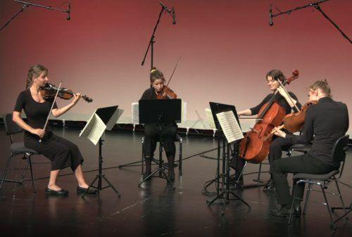 Den Studierenden gelang es, die gesamte Farbenpracht ihrer Instrumente auch über den Livestream in Szene zu setzen. Andreas Feuerstein