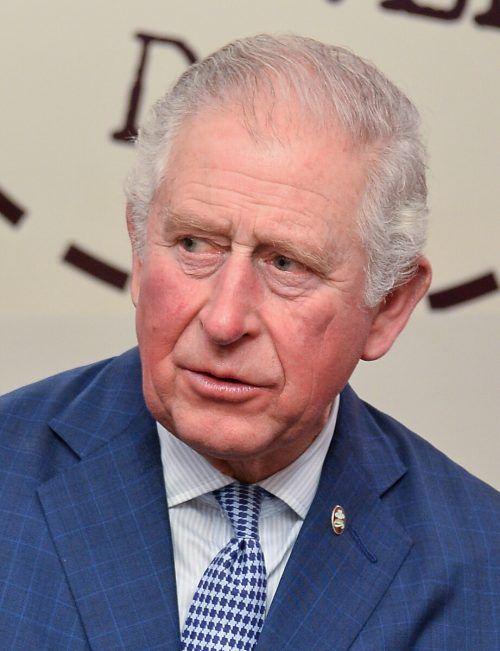 Der Prinz setzt sich schon seit Langem für Umweltschutz ein. Reuters