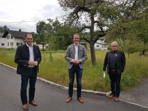 Die Vertreter von Landwirtschaftskammer, Land und Vorarlberger Holzbaukunst luden zum Gespräch. LK