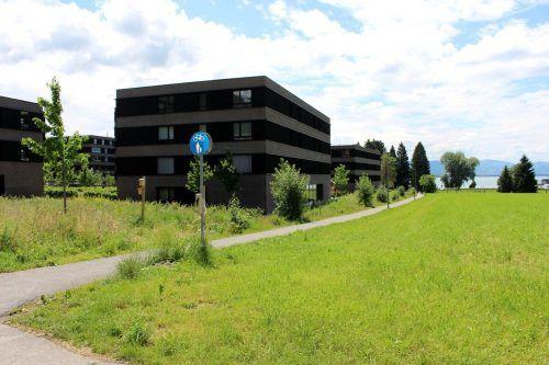 Entlang des Fuß- und Radweges wird der Oberlochauerbach geöffnet.
